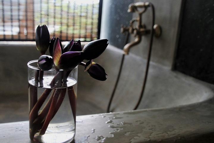 ミラブルは井戸水でも使える?使えない?水道水と効果は一緒?